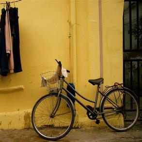 Bike Trails and Bike Safety in Alexandria
