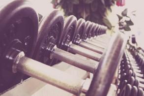 dumbbells on a rack